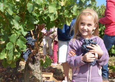 Accueil pédagogique dans une vinaigrerie balsamique