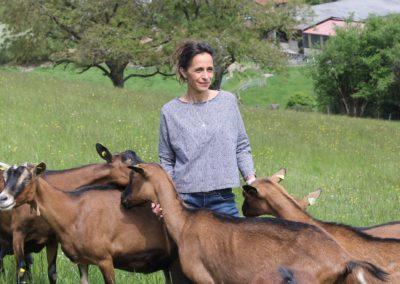 Fromages fermiers de vache et chèvre en Haut Beaujolais