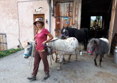Une écocabane à la Chèvrerie de Villarenger